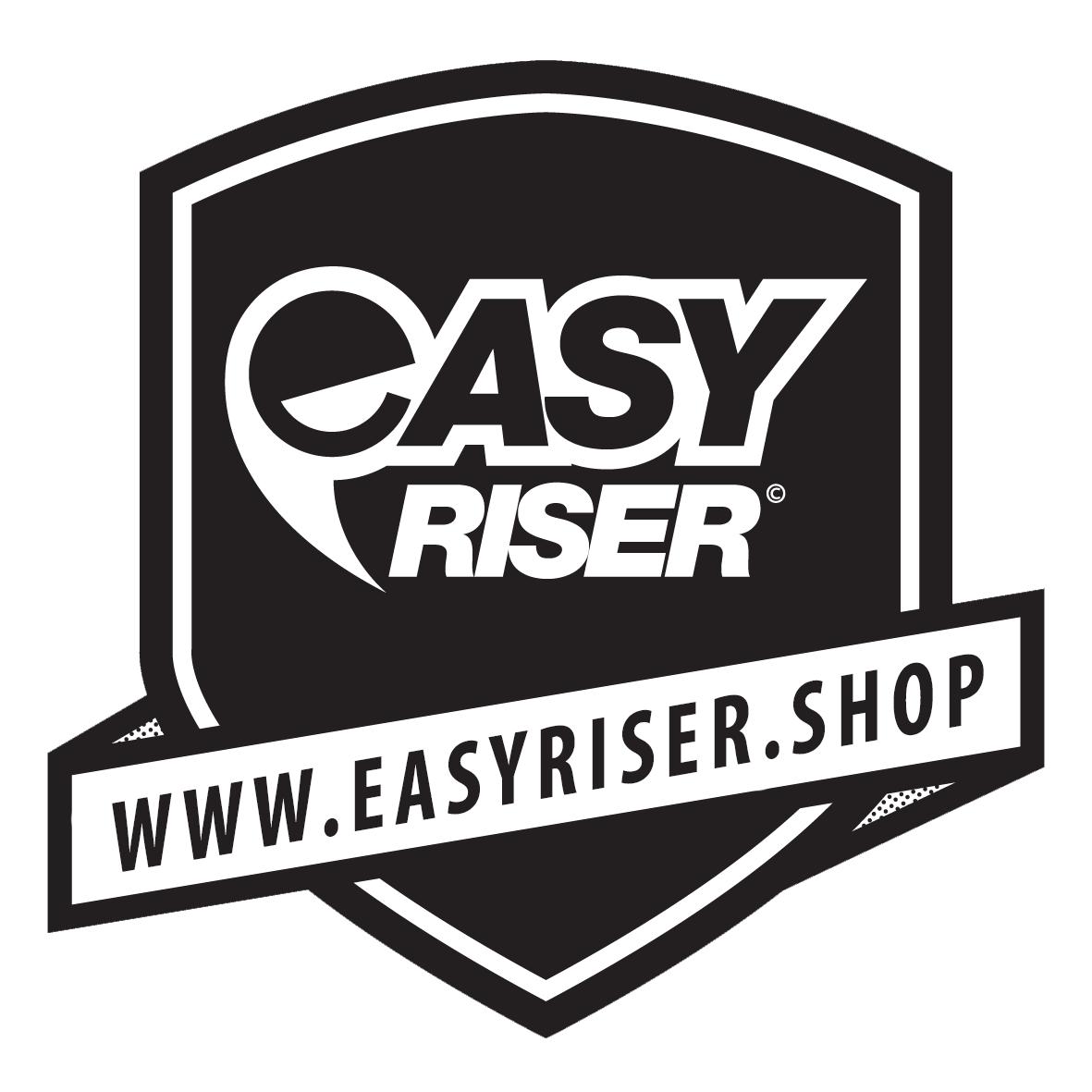 """Résultat de recherche d'images pour """"easyriser logo"""""""