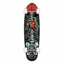 "Acheter Longboard Riviera Anatomy Of A Skateboard 8"" Black/Red/White"