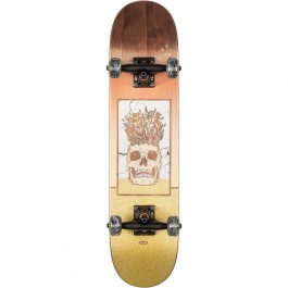 Skate Globe Celestial Growth Mini 7