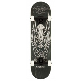 Skate Birdhouse Stage 2 Bat Skeleton 8.125