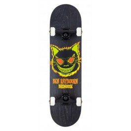 Skate Birdhouse Stage 3 Raybourn Cat 8