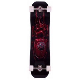 Longboard Original vecter 37 beattle