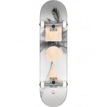 "Skate Globe G1 Stack Lone Palm 8"""