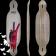 Longboard original apex 34 double concave downhill